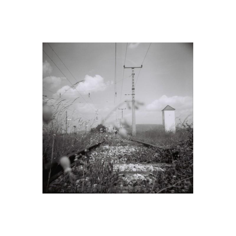 Lomography lady grey black & white Pellicola bianco e nero